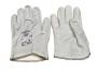 Glove10